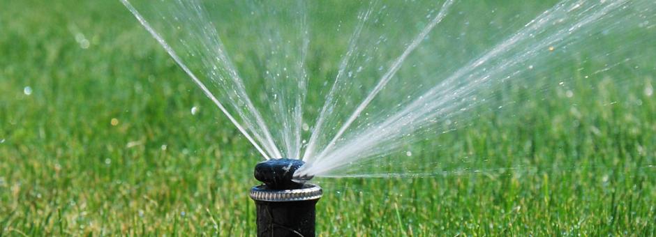 zraszacz w systemie nawadniania ogrodów
